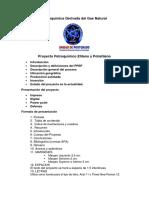 Proyecto Petroquímica Derivada Del Gas
