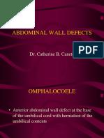 Abdo Mina Wall