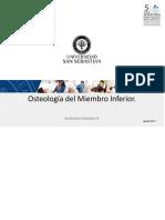 Osteología del MMII - Osteologia de MI 1056