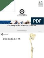 Osteologia de MI 1056
