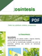FotosIntesis - Copia