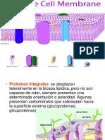 Clase 5  Membrana.pdf