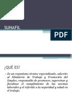 revisar___SUNAFIL