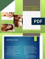 Psicofisiologia de la respuesta sexual.pptx