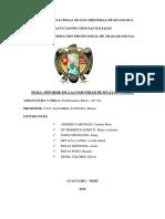 Informe de Problematica 300 Blanca (1)