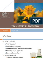 Lolli_Transport_Phenomena_311008.pdf