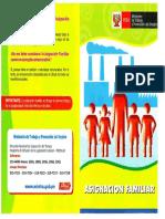asignacion_familiar.pdf