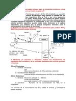 Tercer Examne Fisiologia Vegetal .......Imprimir