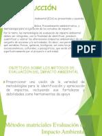 Impacto Ambiental Matrizdiagrama de Redes Causa Efecto