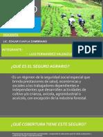 Diapositivas Seguro Agrario