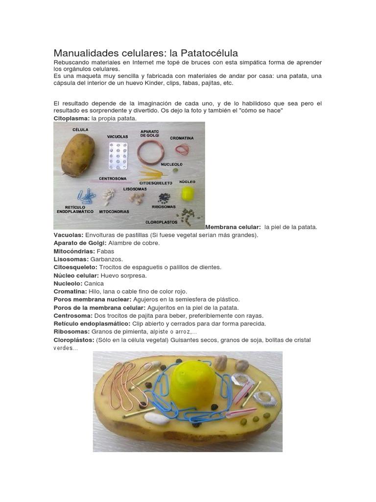 Manualidades La Patatocelula