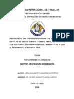 Tesis Doctoral_Carlos Zamora Gutiérrez