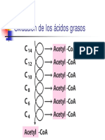 Tema20.pdf