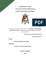 biofertilizantes en repollo.pdf