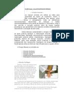 Terapia Manual - Metodo Kabat