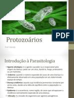 Protozooses e Helmintoses.pptx