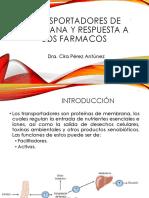 Transportadores de membrana y respuesta a los farmacos