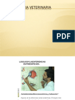 Oftalmologiaveterinaria Revision 150523183030 Lva1 App6892