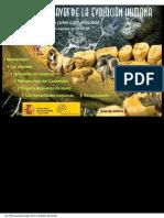 CLAVES DE LA EVOLUCIÓN HUMANA.pdf