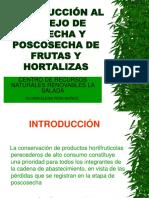 3597199 Manejo de Cosecha y Poscosecha 1