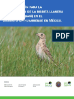 Plan de conservación para la bisbita llanera (Anthus spragueii) en el Desierto Chihuahuense