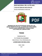 Palao_Mamani_Yovana.pdf