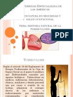 2792017 Taller I-medicina Del Trabajo-hist de La Enf-tuberculosis