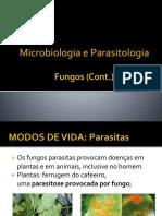 Apresentação1 fungos cont..pptx