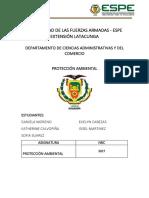 INFORME DE PROTECCIÓN.docx