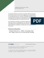 RodriguezManzanera.pdf