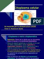 citoplasma_celular_2008[1]