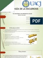 Fisiopatología de La Esclerosis Múltiple