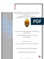 Informe Final Practica Profesional Licenciatura Enfermeria.pdf