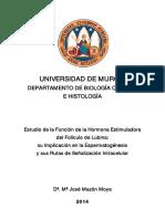 Mª José Mazón Moya.pdf