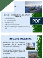 5. Causas y Clases de Impactos [Modo de compatibilidad].pdf