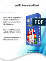 Multilizer4PDF.pdf