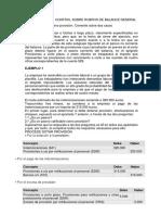 Desarrollo Del Control Sobre Rubros Deñ Balance General
