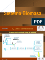12.Sistema Biomasa