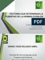 FACTORES QUE DETERMINAN LA PUBERTAD DE LA HEMBRA OVINA EN C2.pdf