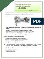 5º Básico (6)prueba agua.doc