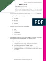 Ensayo Nº 1.pdf