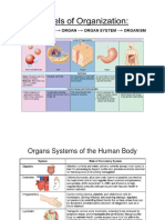 Organs Systems of the Human Body