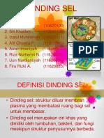 ppt-20klompok-206-20dinding-20sel-130927022824-phpapp01