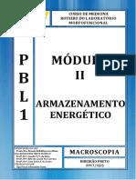 Roteiro - Macro- Mód. II - 2017-1 - PBL1(1)