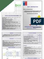 Diptico Guia e Instructivo Para La Importacion de Sustancias Quimicas Peligrosas CDA e Internacion