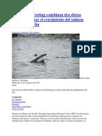 20170814 Skreeting Combinan Dos Dietas Para Maximizar El Crecimiento Del Salmon Hasta La Cosecha