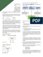 Apuntes - Psicología Social