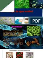 microbiologia de agua.pptx