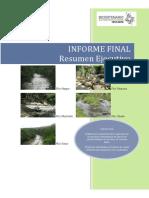 111335494-Caudal-Ecologico-Informe-Final-Resumen.pdf