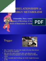 Intercorelation Between Metabolism Ppt 2010